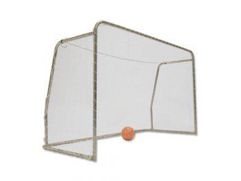 Avyna goal medium