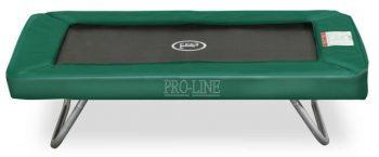 pro-line 209